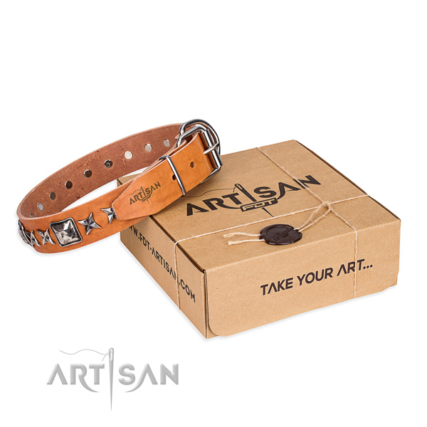 Comfy wearing full grain natural leather dog collar with adornments