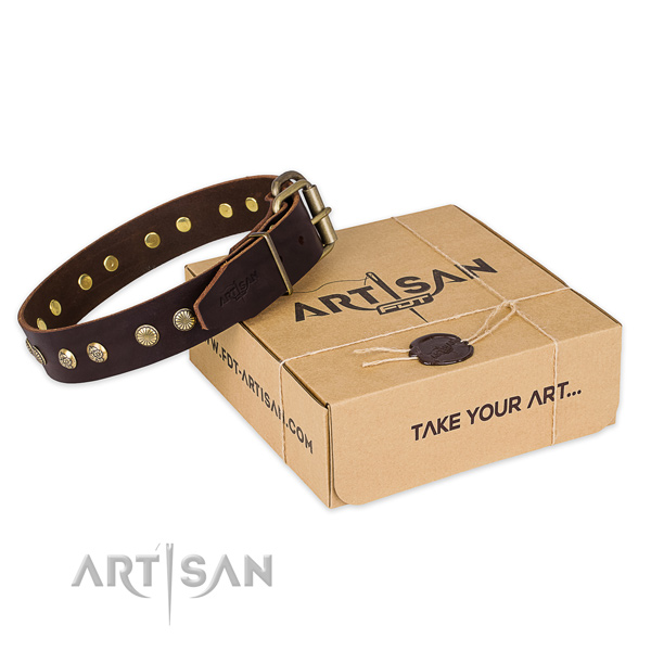 Durable D-ring on leather collar for your beautiful canine