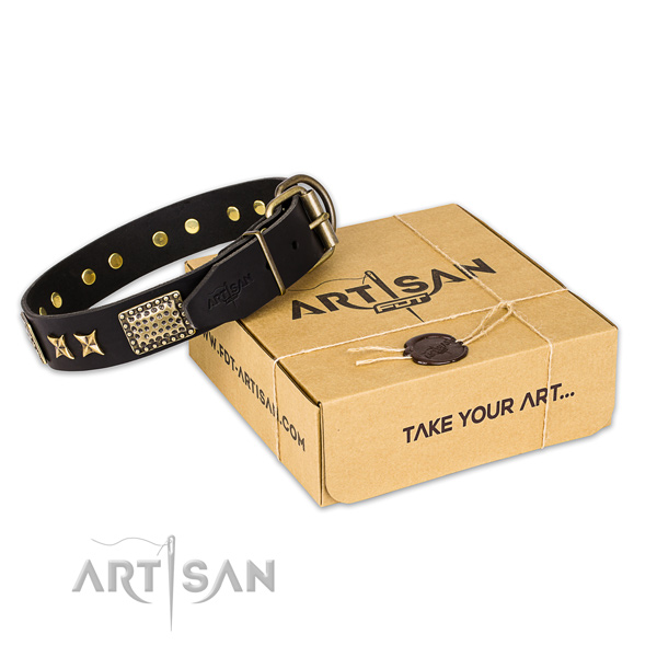 Durable traditional buckle on natural genuine leather collar for your attractive dog