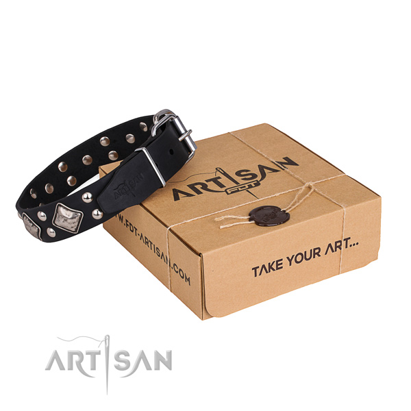 Easy wearing dog collar with Stylish design rust resistant embellishments