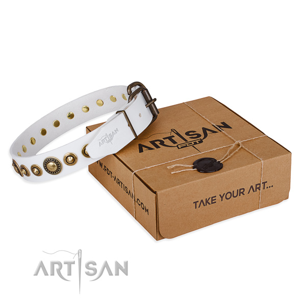 High quality full grain leather dog collar crafted for comfy wearing