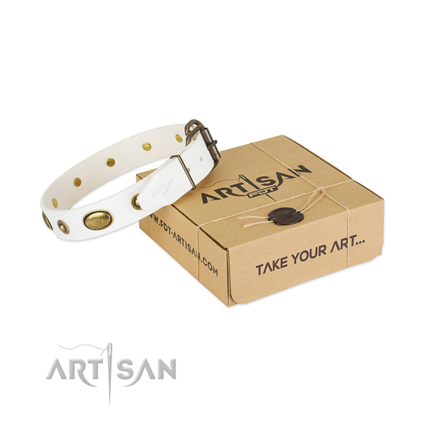 Stylish full grain natural leather collar for your beautiful canine