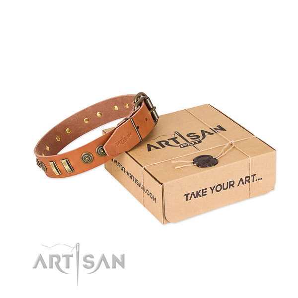 Reliable adornments on full grain leather dog collar for your four-legged friend