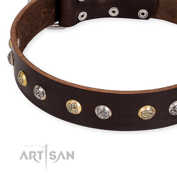 Leather dog collar with top notch corrosion resistant studs