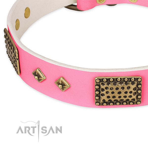 Full grain natural leather dog collar with studs for daily use