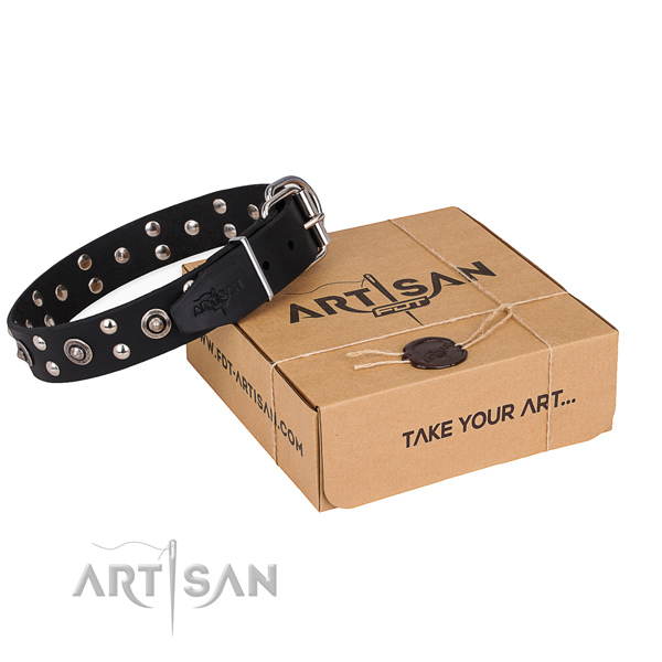 Everyday use dog collar with Stylish reliable studs