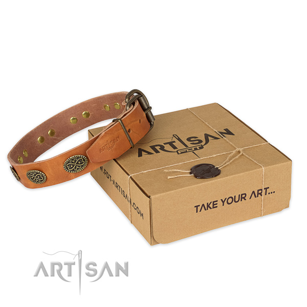 Strong fittings on full grain genuine leather collar for your beautiful dog
