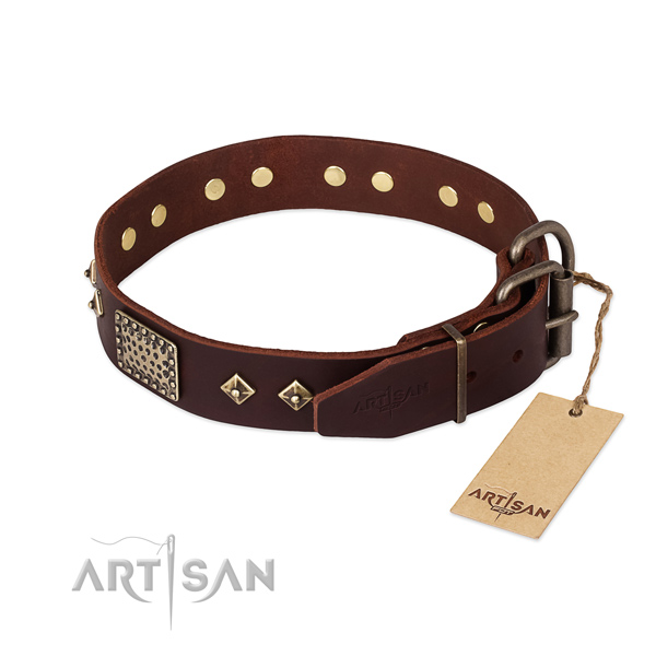 Full grain natural leather dog collar with strong buckle and studs