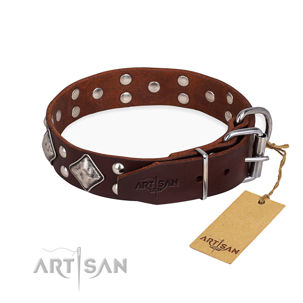 Full grain natural leather dog collar with extraordinary durable embellishments