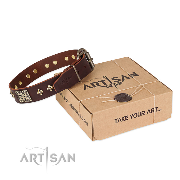 Exceptional leather collar for your lovely four-legged friend