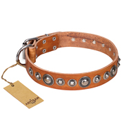 """Daily Chic"" FDT Artisan Tan Leather Pitbull Collar with Decorations"