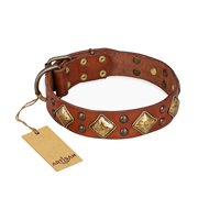 """Flight of Fancy"" FDT Artisan Adorned Leather Pitbull Collar"