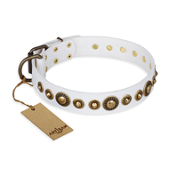 """Swirl of Fashion"" FDT Artisan Delicate White Leather Pitbull Collar with Stunning Bronze-Plated Round Studs"