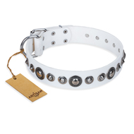 """Ice Age"" FDT Artisan White Studded Leather Pitbull Collar"