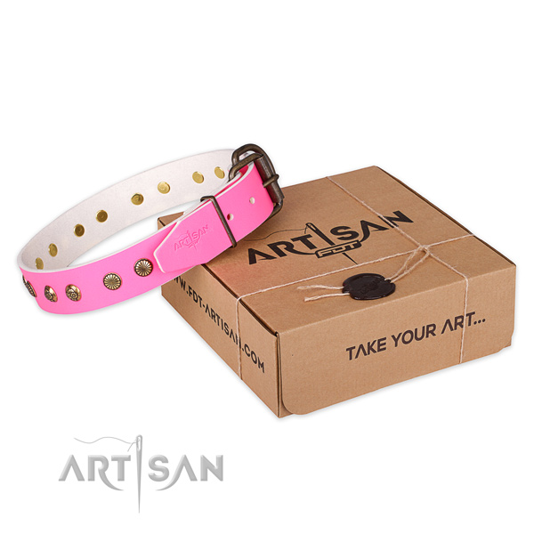 Reliable traditional buckle on leather collar for your lovely dog