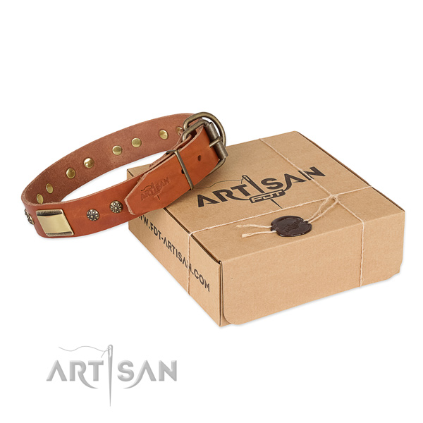 Unusual leather collar for your stylish doggie