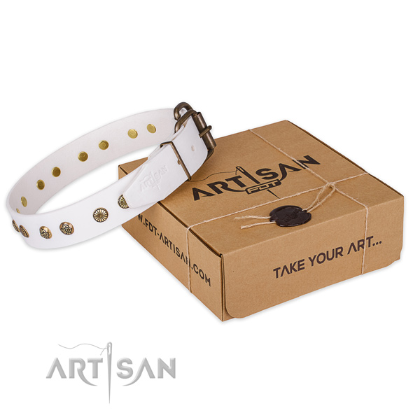 Reliable traditional buckle on full grain leather collar for your attractive pet