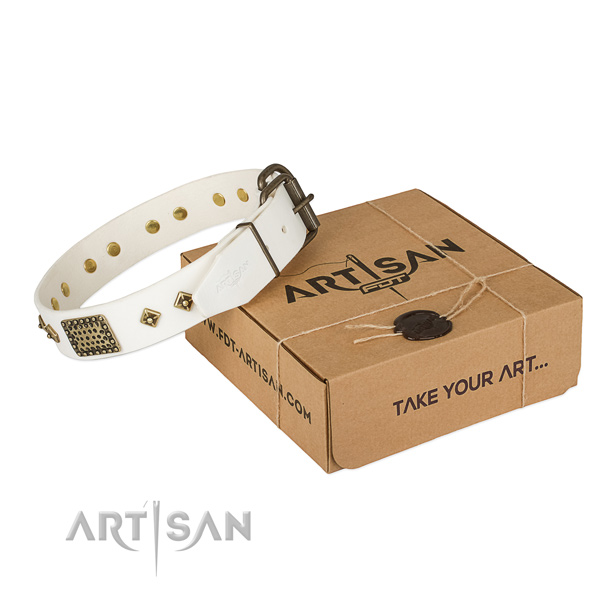 Perfect fit genuine leather collar for your beautiful dog