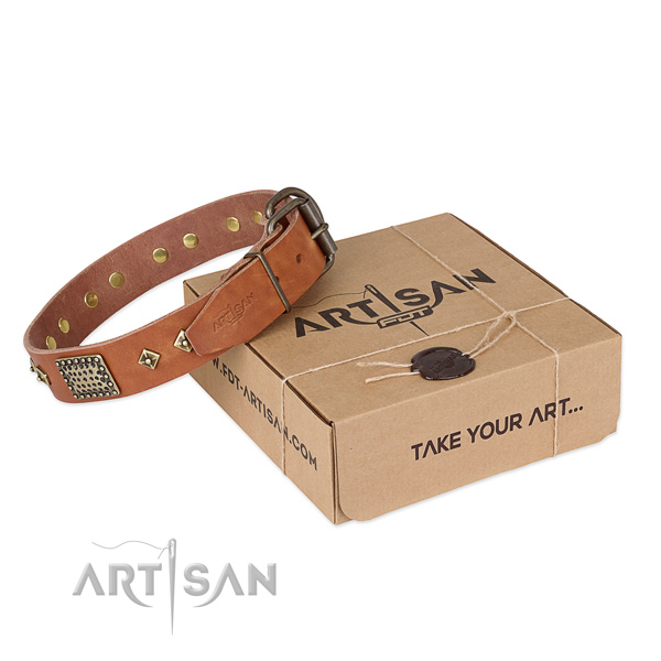 Stunning genuine leather collar for your stylish pet
