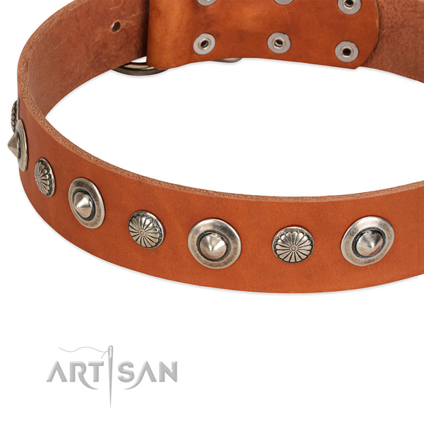 Designer embellished dog collar of top notch natural leather