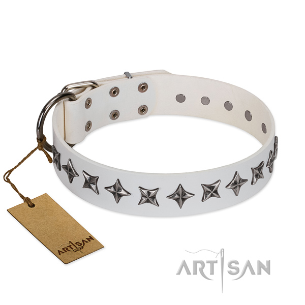 Comfortable wearing dog collar of reliable leather with decorations