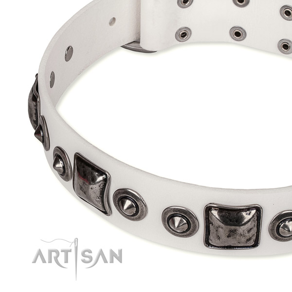Top notch full grain leather dog collar created for your attractive doggie