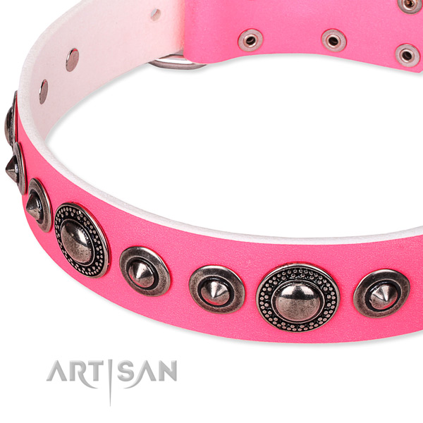 Daily walking embellished dog collar of reliable full grain natural leather