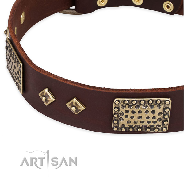 Rust-proof embellishments on genuine leather dog collar for your four-legged friend