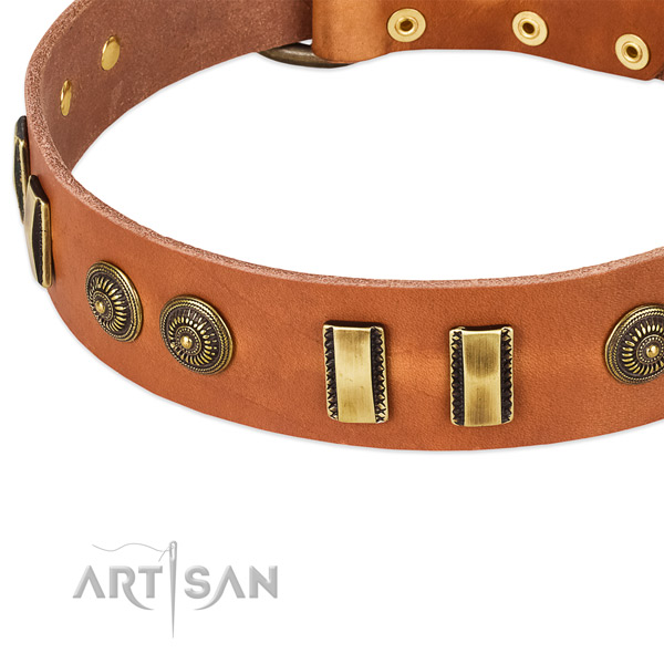 Rust resistant traditional buckle on leather dog collar for your dog