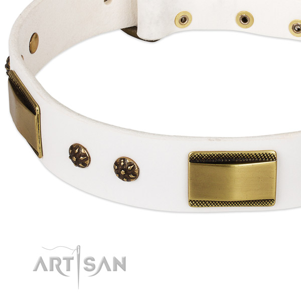 Corrosion resistant D-ring on leather dog collar for your canine