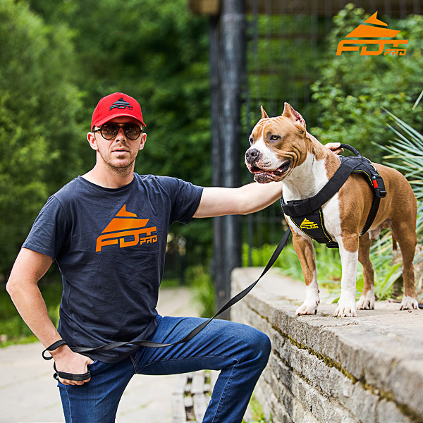 Men T-shirt of Fine Quality Cotton with Pro Logo for Dog Training