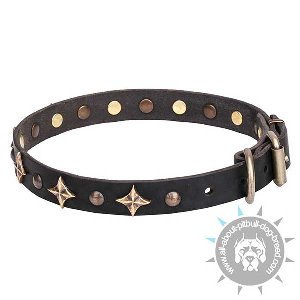 Up-to-trend Walking Leather  Collar for Pitbull