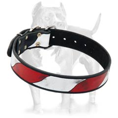 Superior buckle leather dog collar