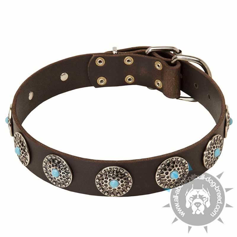 Buy Best Large Dog Gear Pitbull Studded Leather Collar