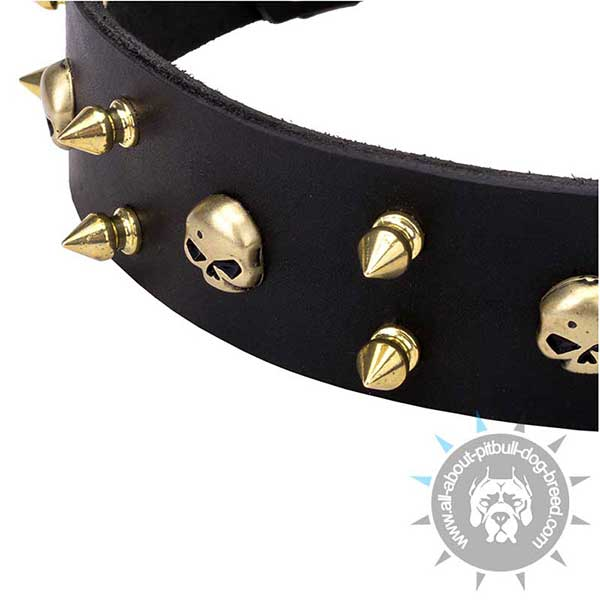 Adorned with Skulls and Spikes Leather Collar