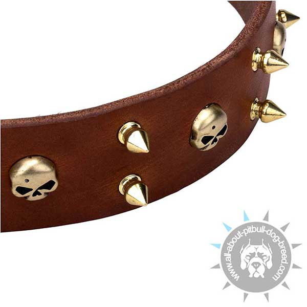 Wide Leather Collar with Brass Decoration