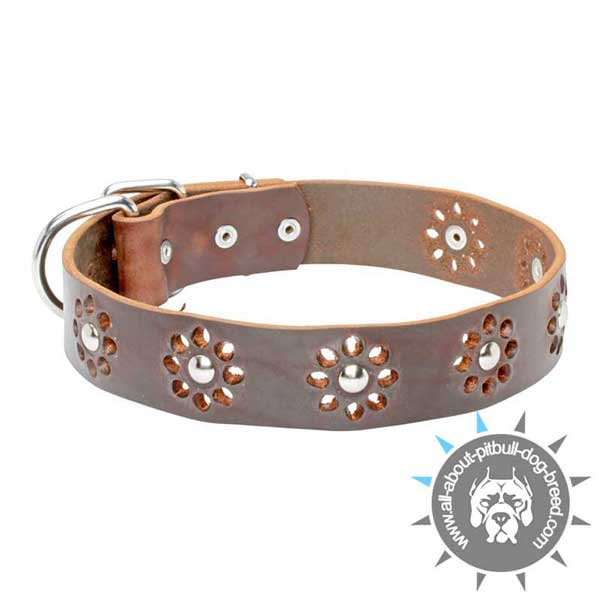 Elegant Leather Collar with Flower Decoration