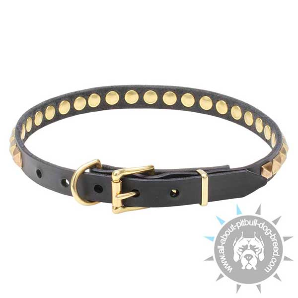 Pitbull Leather Dog Collar with Strong Buckle and D-ring