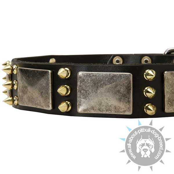 Decorations on Leather Pitbull Collar