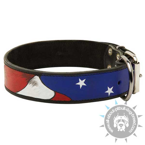 Bright and Attractive leather dog collar