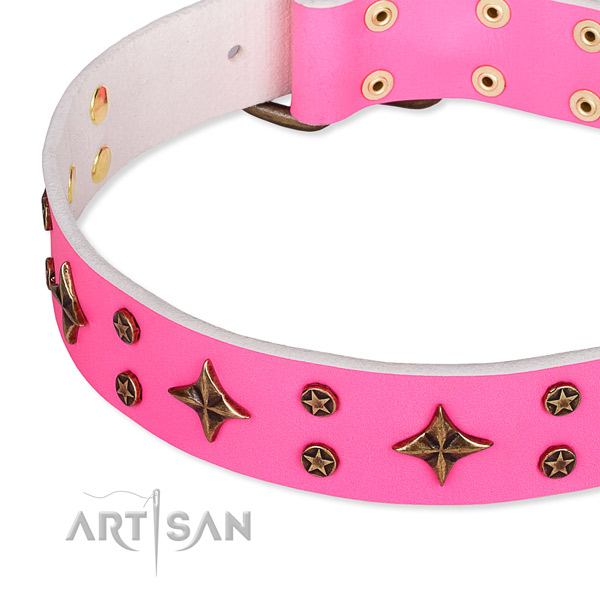 Full grain natural leather dog collar with amazing studs