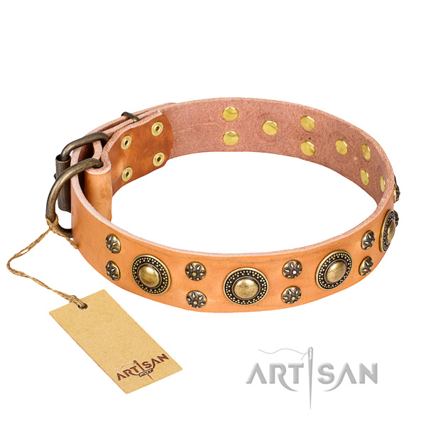 Unique full grain leather dog collar for daily use