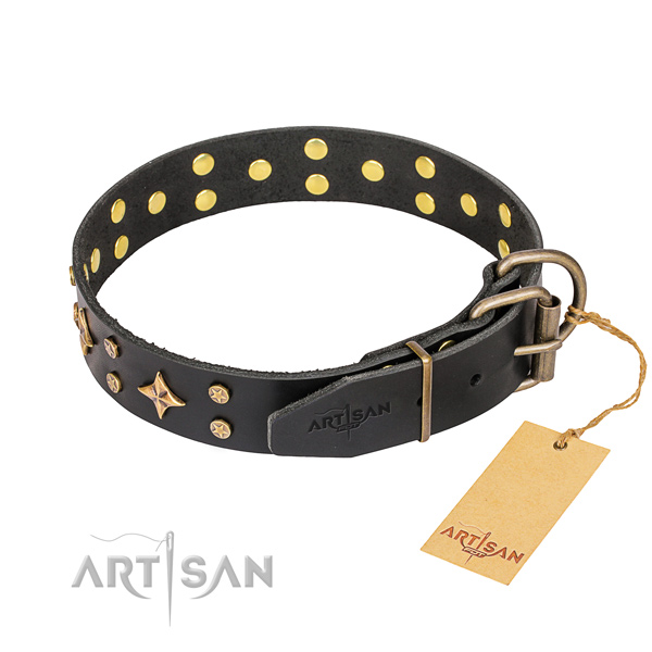 Walking full grain leather collar with adornments for your four-legged friend
