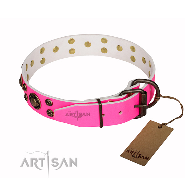 Trendy leather dog collar for everyday walking