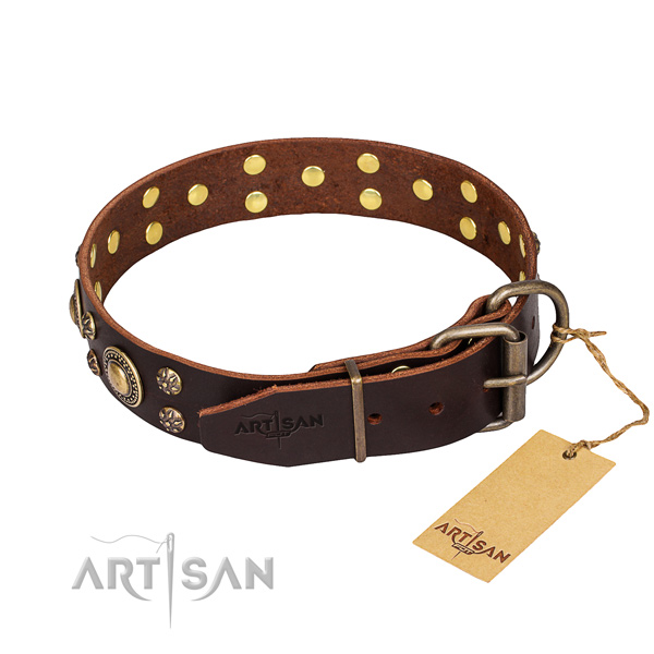 Daily use full grain natural leather collar with decorations for your doggie