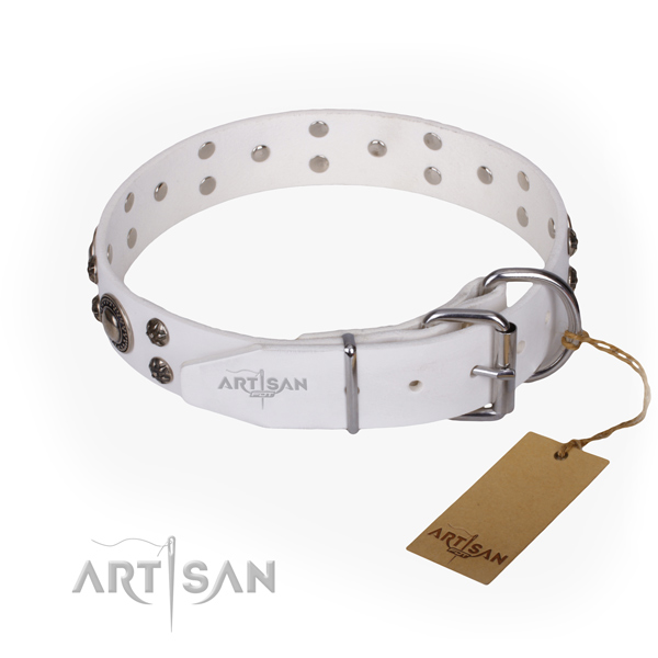 Everyday use genuine leather collar with embellishments for your doggie