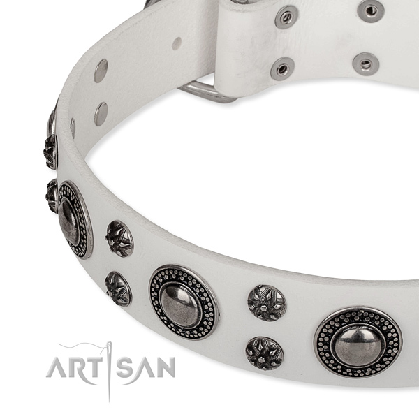 Daily use leather collar with durable buckle and D-ring