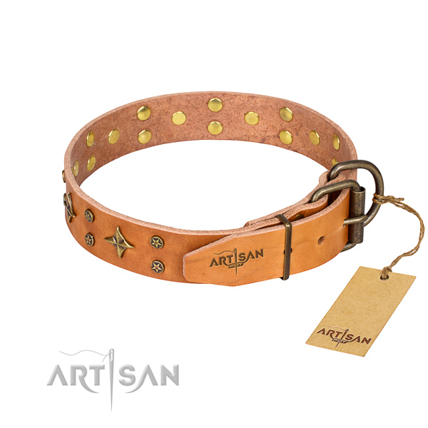 Everyday walking full grain leather collar with decorations for your canine