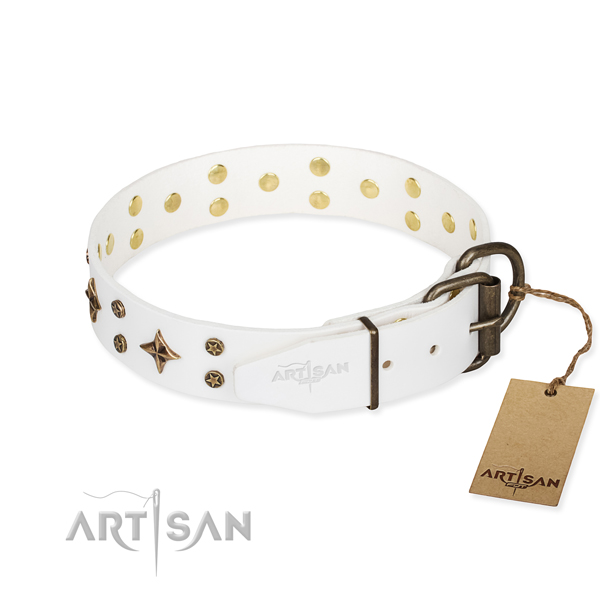 Daily use full grain genuine leather collar with embellishments for your pet