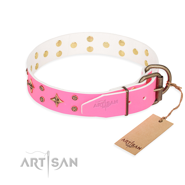 Walking genuine leather collar with decorations for your doggie